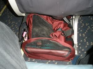 Jasmine under the aisle seat