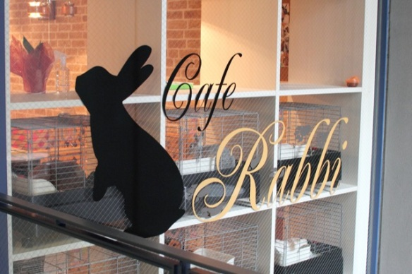Rabbit cafe